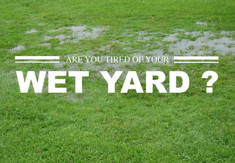 Reed,Landscape,Irrigation,Discover,Outdoor,Living,best New Bern Landscape  Drainage Solutions ...