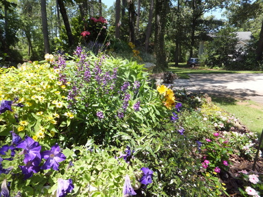 Reed,Landscape,Irrigation,Discover,Outdoor,Living,best New Bern landscape contractor,guaranteed,licensed,bonded,insured,Trent Woods,Oriental,Taberna,Greenbrier,River Bend,Carolina Colours,Fairfield Harbour,Craven County,Pamlico County,best landscaper,landscaping,irrigation system,low voltage lighting,quality landscape lighting,drains,drainage,best drainage solutions,retaining walls,patio,paver,concrete paver,brick paver,paver driveway,paver walkway,paver path,natural stone,river rock,water feature,pondless water feature,koi pond,pond,quality Vista Lighting,Belgard,Hunter,Rainbird,garden,perennial,annual,maintenance,meticulous grounds maintenance,landscape maintenance,most popular Eastern North Carolina landscape contractor,pergola,outdoor kitchen,quality,professional,professionalism,best,dedicated,integrity,drainage solutions,french drain,New Bern landscape design,Craven County landscape design,Oriental landscape contractor,finest landscape company in New Bern and Craven County and Pamlico County